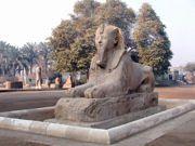 mover_egypt